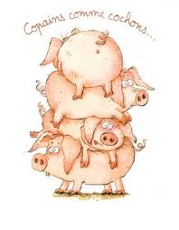cochon.jpg
