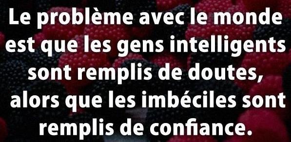 001-Les-imbeciles.jpg