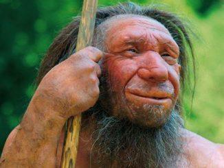 neanderthaler-rekonstruktio.jpg